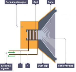 Electric Speaker