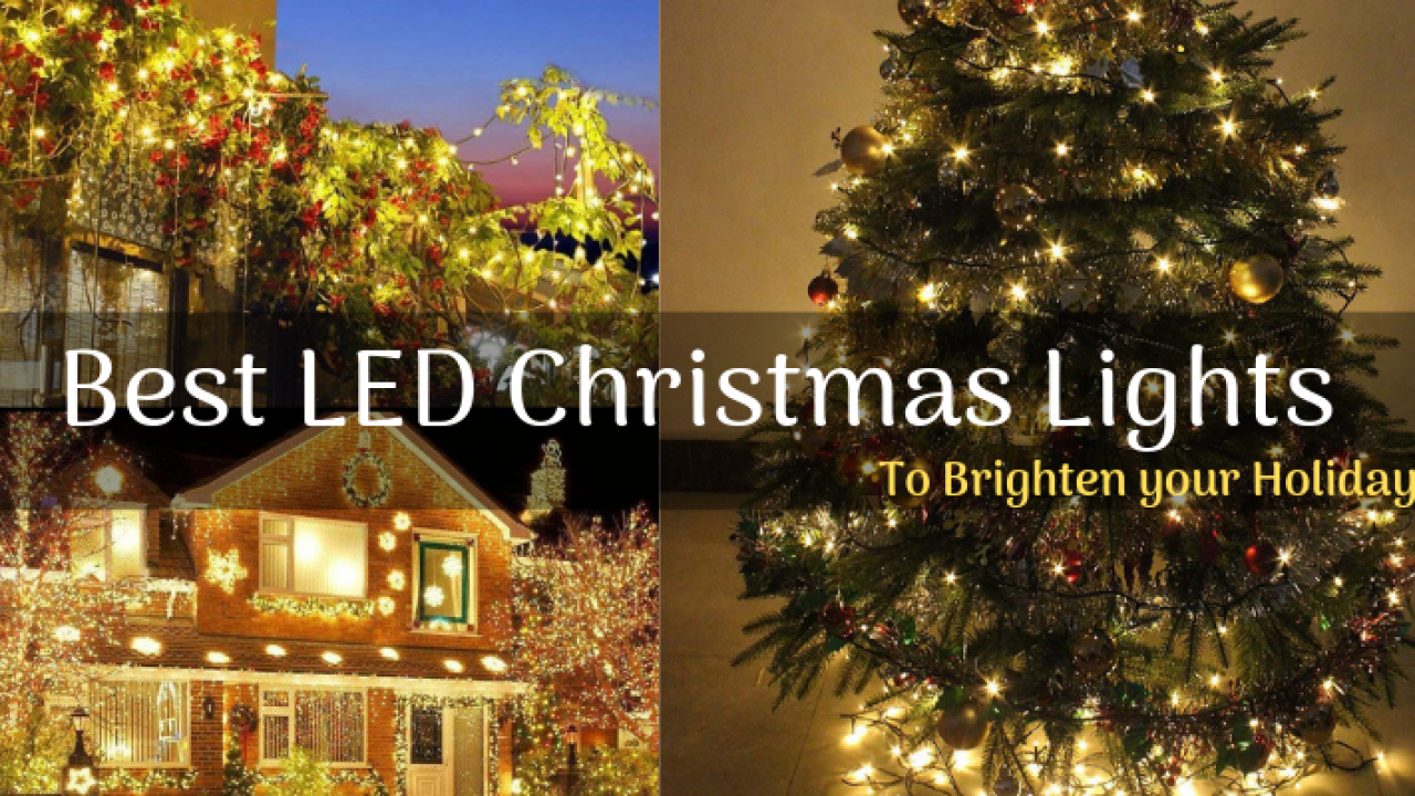 13 Best Led Christmas Lights To Brighten Your Home Garden
