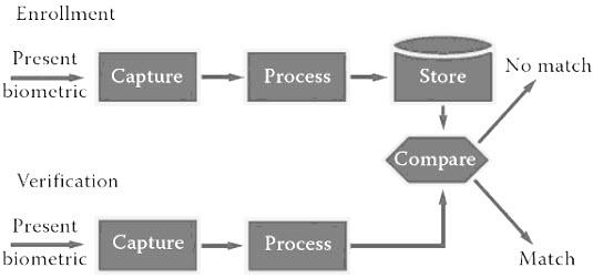 Types of Biometric Sensors Biometric System